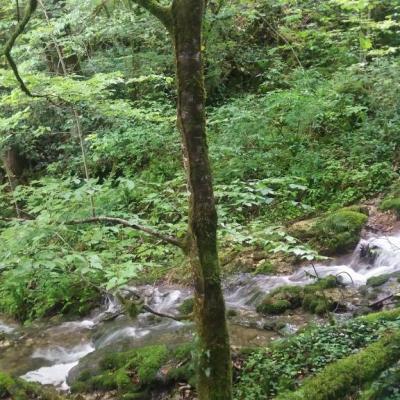Le Val aprés la pluie